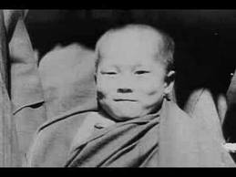 Does the Dalai Lama Live with ADHD?