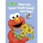 Can Elmo Taste Time?
